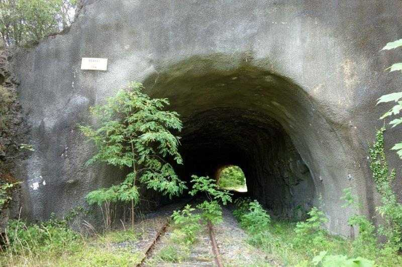 tunnel de Perret