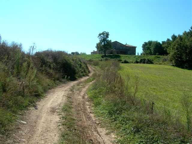 En direction du Collet de Sant Marti